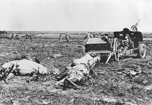 Убитые лошади орудиной упряжки советской 76-мм дивизионной пушки образца 1939 года (УСВ) в поле под Керчью.