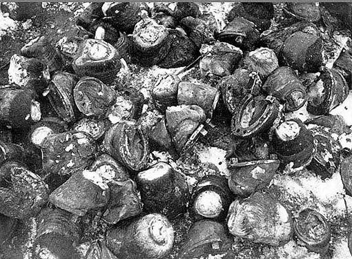 Окруженные немцы поели лошадей Гора копыт лошадей, съеденных окруженными в Сталинграде немцами (После окружения под Сталинградом немецкой 6-й армии и перекрытия путей ее снабжения продовольствием, в немецких войсках начался голод.)