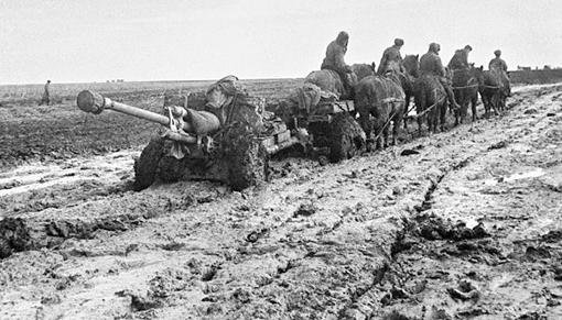 Именно упряжки в шесть лошадей всю войну без всяких жалоб и капризов тянули орудия, меняя огневые позиции батареи.